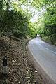 Entering Burley on the Ringwood Road - geograph.org.uk - 177414.jpg