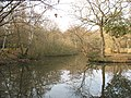 Epping Forest, southern pond at Strawberry Hill - geograph.org.uk - 1214485.jpg