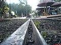 Estaçoes de Bondes no Parque Taquaral - panoramio (1).jpg