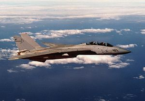F-14A VF-301 in flight near San Diego 1984.JPEG