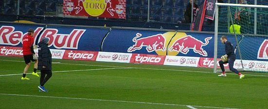 FC Red Bull Salzburg gegen SCR Altach (März 2015) 02.JPG
