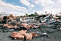 FEMA - 5151 - Photograph by Jocelyn Augustino taken on 09-25-2001 in Maryland.jpg