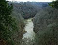 Falling-water-river-ridgetop-view-tn1.jpg