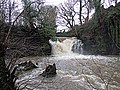 Falls on the Clydach - geograph.org.uk - 1343302.jpg