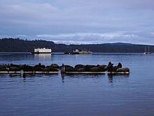 Vancouver Island Fanny Bay
