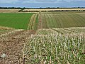 Farmland, Broughton - geograph.org.uk - 517849.jpg