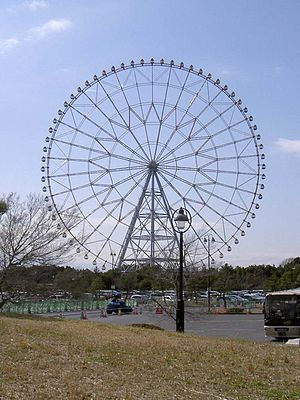 Diamond and Flower Ferris Wheel - Image: Ferris wheel at Kasai Rinkai Park
