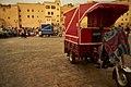 Fez (36080620133).jpg