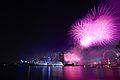 Firework (20210518881).jpg