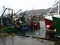 Fishing boats Tarbert Harbour - geograph.org.uk - 674094.jpg