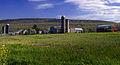 Flickr - Nicholas T - Farm Tour (1).jpg