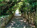 Flickr - ronsaunders47 - CLIFFTOP WALK . SANDOWN TO SHANKLIN. IOW..jpg