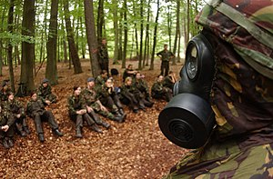 38th Combat Support Wing - Image: Flight Sergeant Daryl Newland, Royal Air Force Cadet, wears the chemical warfare gear to demonstrate for the cadets on warrior day at the 38th Construction and Training Squadron, Ramstein Air Base (RAB) 060810 F BC152 188