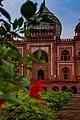 Flower and safdarjung tomb.jpg