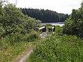Footbridge near Meenameen Lough - geograph.org.uk - 1391262.jpg