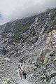 Franz Valley Track in Westland Tai Poutini National Park.jpg