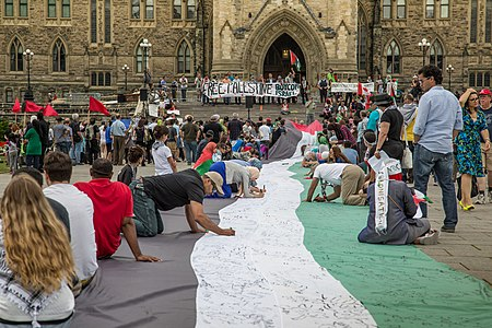 Free Palestine at Canadian Parliament Ottawa 14579999939.jpg