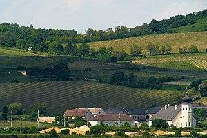 Stiftsweingut Heiligenkreuz ist eines der ältesten Weingüter Österreichs