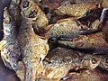 Fried punti fish.jpg