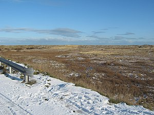 English: Frozen marshland at Coatham near Redc...