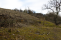 Fulda Mittelrode NR 163482 Haimberg bei Mittelrode Lime Outcrop S b.png