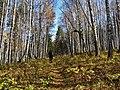 G. Miass, Chelyabinskaya oblast', Russia - panoramio (78).jpg