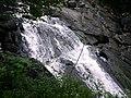 Ganllwyd NNR - panoramio (17).jpg