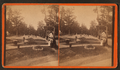 General view of Flower Gardens, by Judd, C. S., fl. 188-.png