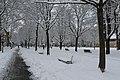 Geneve Sous la neige - 2013 - panoramio (20).jpg