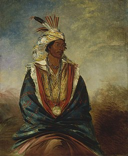 George Catlin - Tel-maz-há-za, a Warrior of Distinction - 1985.66.293 - Smithsonian American Art Museum