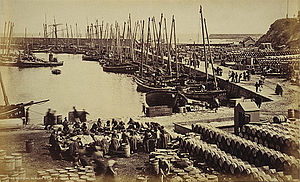 "English: Wick - Harbour Scene - ""The Herr..."