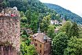 Germany - Heidelberg (28869739402).jpg