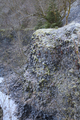 Gersfeld Gr Nalle Quarry center Basalt w d.png