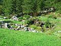 Giardino Botanico Alpino Paradisia abc6.JPG