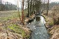 Glowna River in Wierzenica.JPG
