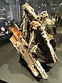 Goethite from Laurium, Greece - Royal Ontario Museum - DSC00227.JPG