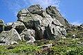Granite 'Castle' on Nanjulian Cliff - geograph.org.uk - 497892.jpg