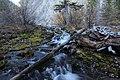 Grassi Lakes road trip Canmore Alberta Canada (10277751196).jpg