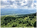Green view (28991642878).jpg