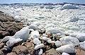 Greenland-Ilulissat2.jpg