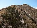 Guadalupe Peak GUMO.jpg