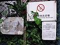HK 西環 Sai Ying Pun 皇后大道西 Queen's Road West Mui Fong Street August 2018 SSG (3).jpg