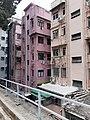 HK SW 上環 Sheung Wan 堅巷花園 Caine Lane Garden February 2020 SS2 19.jpg