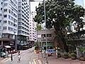 HK train view 灣仔 Wan Chai 莊士敦道 Johnston Road July 2019 SSG 11.jpg