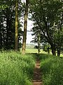 Hadrian's Wall Path near Sewing Shields - geograph.org.uk - 474323.jpg