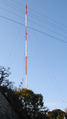 Hamamatsu-tomitsuka-antenna.png