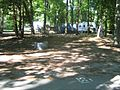 Harrisville state park camping 02.jpg