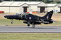 Hawk (5090417320).jpg