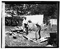 Henry Ford chopping wood LOC npcc.04716.jpg