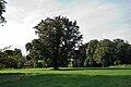 Herbern-090726-9115.jpg